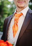 Grooms suit Royalty Free Stock Images