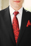 Grooms suit Royalty Free Stock Photos