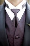 Groom's Suit Detail Stock Image