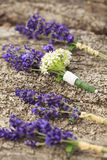 Groom's wedding boutonniere Royalty Free Stock Photo
