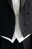 Groom's wedding suit Royalty Free Stock Photo