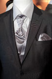 Groom's wedding suit Royalty Free Stock Photography