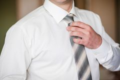 Groom Stock Photography