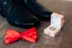 Groom shoes and bow tie Royalty Free Stock Image