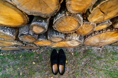 Groom shoes on the grass under a logs. Groom shoes on the grass under a pile of logs Stock Images