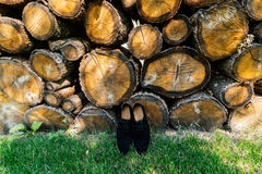 Groom shoes on the grass. Under a pile of logs Royalty Free Stock Image