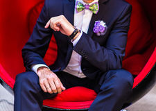 Groom sitting Stock Images