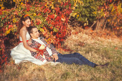 Groom is sitting leaning against the bride. Groom is sitting on the grass in the autumn park leaning against a bride Stock Image