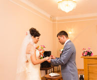 Groom slipping ring on finger of bride at wedding Royalty Free Stock Image