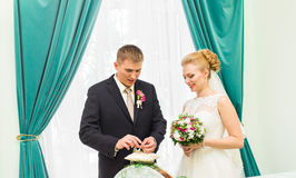 Groom slipping ring on finger of bride at wedding Royalty Free Stock Images