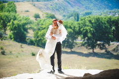 Groom Spinning Bride. Groom hugging and spinning bride at sunlight Stock Image