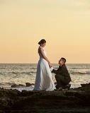 Groom stand on knee and hold bride hand Stock Photos