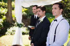 Groom standing with waiter and groomsman in park. Thoughtful groom standing with waiter and groomsman in park royalty free stock images
