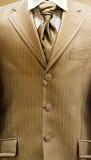 Groom suit Stock Image