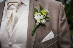 Groom in a suit Stock Images