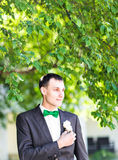 Groom in a suit holding buttonhole Royalty Free Stock Photos