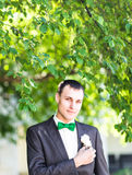 Groom in a suit holding buttonhole Stock Images