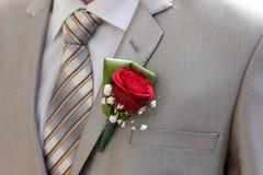 Groom suite Royalty Free Stock Photo
