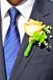 Groom tailored suit with tie & flower detail Royalty Free Stock Photography