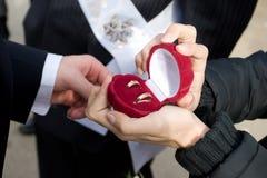 Groom takes off wedding rings Stock Photos