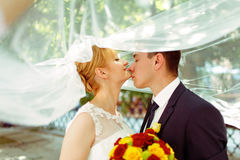 Groom touches bride's chin tenderly standing under her veil Royalty Free Stock Photos