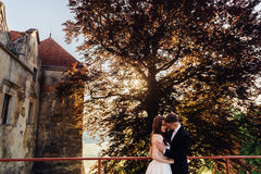 Groom touches bride& x27;s shoulder tenderly. While they pose on the old bridge royalty free stock photos