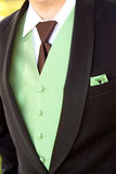 Groom Tuxedo Royalty Free Stock Photography