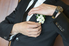 Groom in tuxedo Royalty Free Stock Image