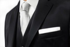 Groom tuxedo Royalty Free Stock Images
