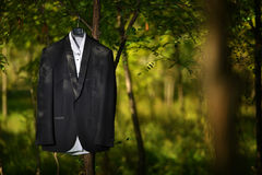 Groom tuxedo Royalty Free Stock Image