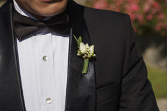Groom with Tuxedo and Wedding Flower Stock Image