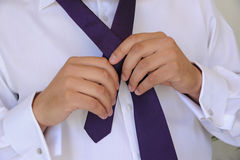 Groom tying tie Stock Image