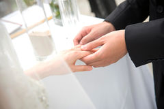 Groom was wearing a ring to the bride at the wedding. The groom was wearing a ring to the bride at the wedding Royalty Free Stock Photo
