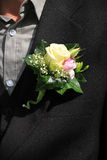 Groom wearing boutonniere Stock Photography
