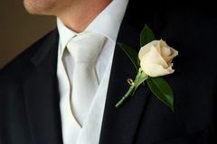 Groom wearing boutonniere on wedding day Royalty Free Stock Images