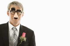 Groom wearing groucho glasses. Royalty Free Stock Photo