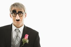 Groom wearing groucho glasses. Royalty Free Stock Image