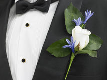 Groom Wearing A Suit With A Rose Corsage Royalty Free Stock Image