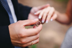 Groom wears the ring bride Royalty Free Stock Image