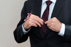 Groom wears a suit in front. Royalty Free Stock Images