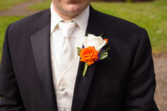 Groom Wedding Attire Detail Royalty Free Stock Photography