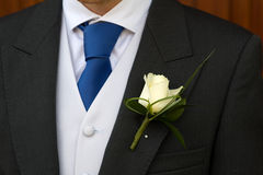 Groom with wedding buttonhole flower Royalty Free Stock Image
