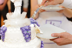 Groom and Wedding Cake. Closeup of groom's hand cutting wedding cake Royalty Free Stock Images