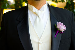 Groom Wedding Day Attire Royalty Free Stock Photography