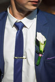 Groom in a wedding jacket and flower Stock Images
