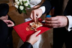 Groom and wedding rings on ceremony of marriage Stock Image
