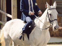 Groom on White Horse Royalty Free Stock Photography
