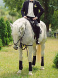 Groom on White Horse Stock Photography