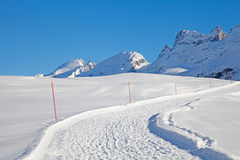 Groomed Alpine Walking Path Stock Photo