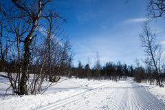 Groomed Cross Country Ski Trail Stock Images